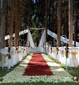 Wedding venue guide zimbabwe wedding venues the glen wedding venue the glen wedding venue junglespirit Choice Image